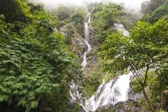 Watervallen in regenwouden en wolk Stock Afbeelding