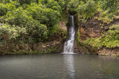 Watervallen in Vallee des Couleurs in Mauritius Nationale Parkcascades Stock Foto