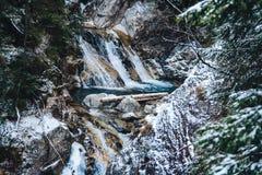 Watervallen van de de winter de de lente gevoede kreek in de winter stock afbeeldingen