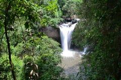 Watervallen in wildernis Royalty-vrije Stock Fotografie