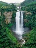 Watervallen in Zuid-Afrika Stock Afbeeldingen