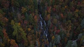 Watervallenantenne stock videobeelden