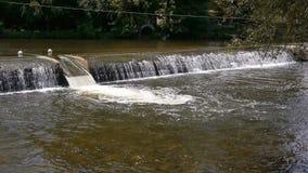 Watervalrivier Orne, Normandië Frankrijk stock video