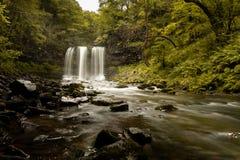 Watervalscène met groene bomen/Achtergrondafbeelding van een waterval/ royalty-vrije stock fotografie