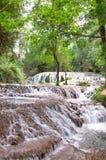 Watervalstappen onder bomen royalty-vrije stock afbeelding