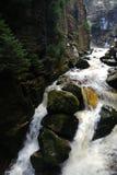 Watervalstroom stock foto's