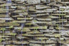 Watervaltuinen met mos Stock Afbeeldingen