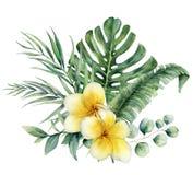 Waterverf bloemen tropisch boeket met plumeria en zilveren dollareucalyptus Hand geschilderde monstera, palmtak vector illustratie