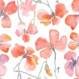 Waterverf bloemenachtergrond met rode papavers stock illustratie