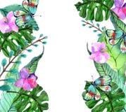 Waterverf Bloemenachtergrond met Tropische orchideebloemen, verlof Stock Afbeeldingen