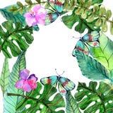Waterverf Bloemenachtergrond met Tropische orchideebloemen, verlof Stock Foto's