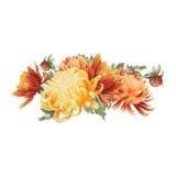 Waterverf bloemenboeket van chrysant Royalty-vrije Stock Afbeelding