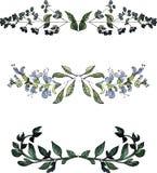 Waterverf bloemengrenzen, de uitstekende bloemenelementen van de stijlwaterverf Stock Afbeeldingen