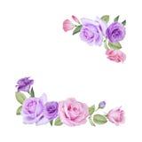 Waterverf bloemenkaart met rozen en lisianthus Stock Fotografie