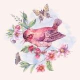 Waterverf bloemenkaart, vogel op een bloeiende tak stock illustratie