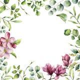 Waterverf bloemenkader met kruiden en bloemen Hand geschilderde installatiekaart met eucalyptus, varen, de takken van het de lent stock illustratie
