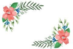 Waterverf bloemenkader van bladeren, kruiden, hibiscus en korenbloemen stock illustratie