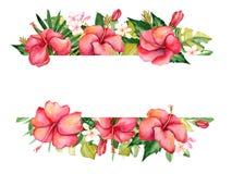 Waterverf bloemensamenstelling Vector Illustratie