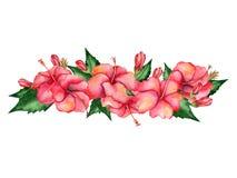 Waterverf bloemensamenstelling Stock Afbeelding