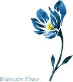 Waterverf die blauwe bloem trekken Stock Afbeeldingen