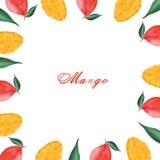 Waterverf die met mango, mangoplakken en bladeren wordt geplaatst royalty-vrije illustratie