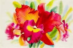 Waterverf die oranje rozerode kleur van orchideebloem schilderen Stock Foto's