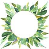 Waterverf Emerald Leaves Frame Background royalty-vrije illustratie
