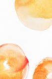 Waterverf geschilderde textuur met gele, oranje en rode cirkels Royalty-vrije Stock Afbeelding