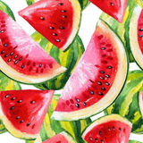 Waterverf het schilderen met watermeloen royalty-vrije illustratie