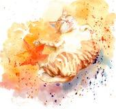 Waterverf het schilderen van het de potkatje van de illustratiekat de slaapkat Stock Foto