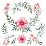 Waterverf met bloemen wordt geplaatst die Royalty-vrije Stock Afbeelding