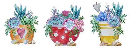 Waterverf met de hand geschilderde reeks van cactus en succulente installatie vector illustratie
