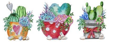 Waterverf met de hand geschilderde reeks van cactus en succulente installatie royalty-vrije stock afbeelding