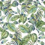 Waterverf naadloos exotisch patroon met tropische bladeren, stock illustratie