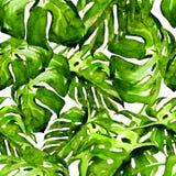 Waterverf naadloos patroon Hand Geschilderde Illustratie van Tropische Bladeren en Bloemen Tropisch de Zomermotief met Monstera-P stock fotografie