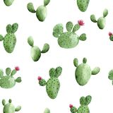 Waterverf naadloos patroon met cactus op witte achtergrond stock illustratie