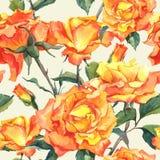 Waterverf Naadloos Patroon met Gele Rozen Royalty-vrije Stock Afbeeldingen