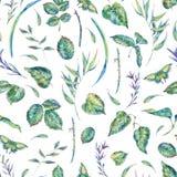 Waterverf naadloos patroon met groene bladeren Stock Afbeeldingen
