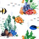 Waterverf naadloos patroon met multicolored koralen, zeeschelpen, zeewieren en vissen, seahorse stock illustratie