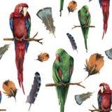 Waterverf naadloos patroon met papegaaien en veren Hand geschilderde rood-en-groene die ara en red-winged op wit wordt geïsoleerd Stock Afbeelding
