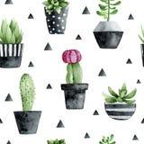 Waterverf naadloos patroon met succulents en cactus op witte achtergrond vector illustratie