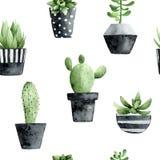 Waterverf naadloos patroon met succulents en cactus op witte achtergrond royalty-vrije illustratie