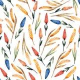 Waterverf naadloos patroon met tarwespruiten en gekleurde bloemen stock illustratie