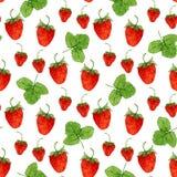 Waterverf naadloos patroon met vectoraardbeien en bladeren op de witte achtergrond Hand getrokken illustratie voor ecoproduct Stock Foto's