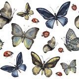 Waterverf naadloos patroon met vlinder en lieveheersbeestje Hand geschilderd die insectornament op witte achtergrond wordt geïsol stock illustratie