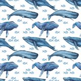 Waterverf naadloos patroon met walvissen, kwallen, potvis, narwal vector illustratie
