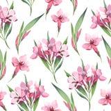 Waterverf naadloos patroon van roze bloemen en groene bladeren Royalty-vrije Stock Foto