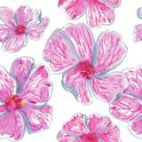 Waterverf naadloos patroon van roze tropische bloemen vector illustratie