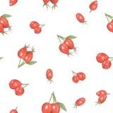 Waterverf naadloos patroon van rozebottelbessen royalty-vrije stock afbeeldingen