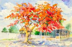 Waterverf origineel het schilderen landschap van pauwbloemen Stock Foto